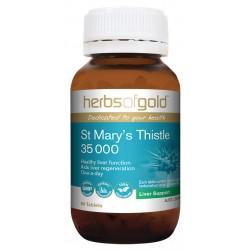 St Mary's Thistle 35 000 60T web d02b180a7a1517f22ab0a5b57ce97a81