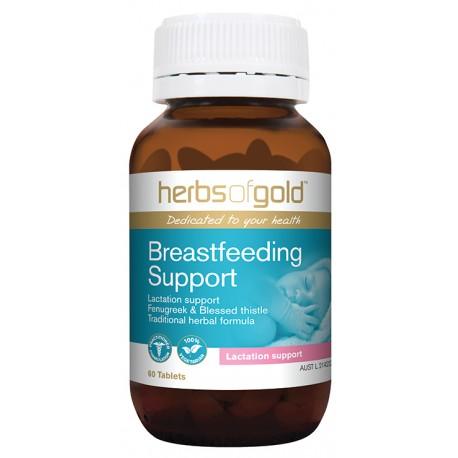 Breastfeeding Support 60T web ee2cdcae416ddc72c52e16f39f23af84